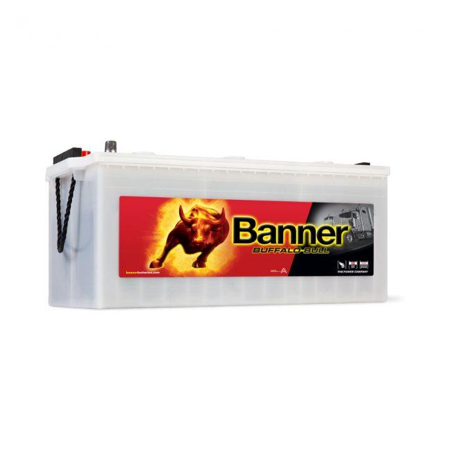 Banner SHD Buffalo Bull 230Ah 72511