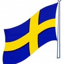 Sverigeflagga 220x140mm 2